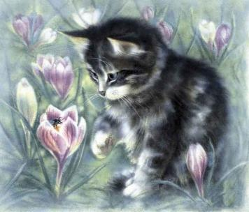 Kitten - for good luck - fine art print on canvas and paper by Canadian Ottawa Artist Elena Khomoutova - reminds me cat Maru